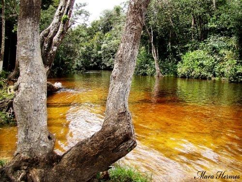 Terra Alta Pará fonte: br.distanciacidades.net
