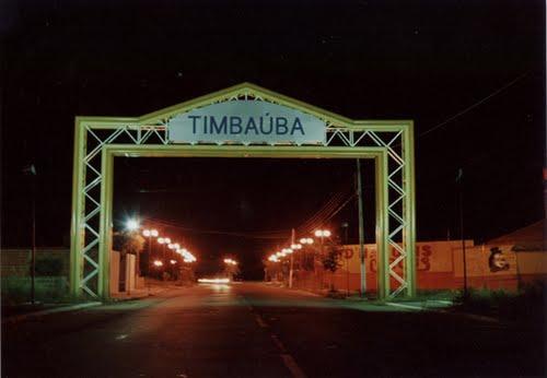 Resultado de imagem para timbauba